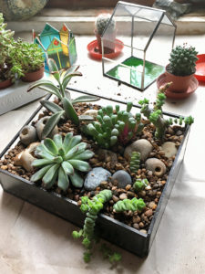 Terrarium making Class for Beginners - 4th March 2018 @ Rainbow Glass Studios | England | United Kingdom